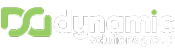 Dynamic Solutions Group Logo